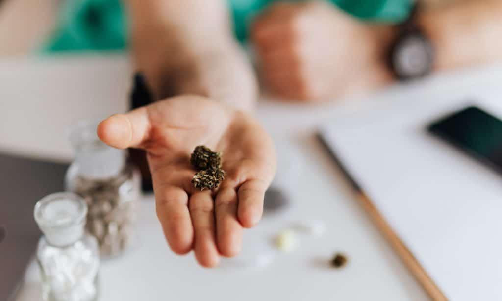 Un aperçu du traitement de la COVID par le cannabis